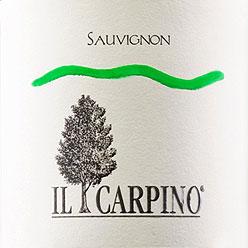 Ilcarpino_sauvignon_etichetta